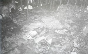 Fire Patterns on Linoleum, floor Resulting from Fully Developed (Post-Flashover) Fire in Full- Scale Test Burn of Residential Structure; No Ignitable Liquids Were Present.